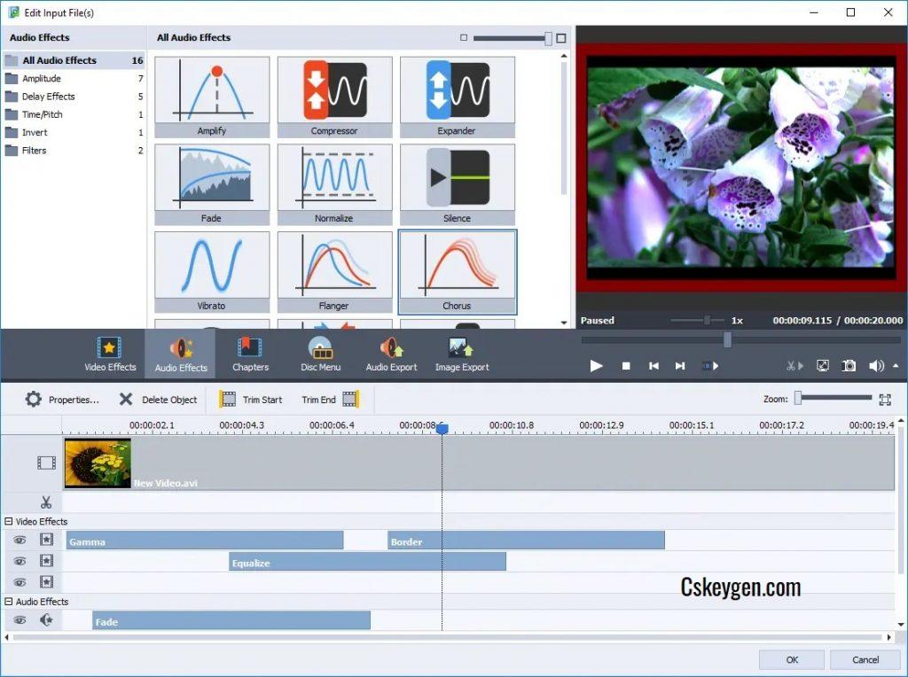 AVS Video Converter Keygen