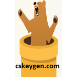 TunnelBear VPN 4.4.2 Crack + Serial Key Free Download (2021)